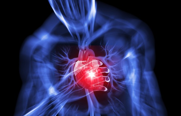 Reversing heart disease holistically is possible by following these steps.